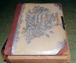 my great grandma lillie darnold johnson photo album